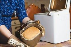 开胃新鲜的面包以烘烤面包的形式 免版税库存照片