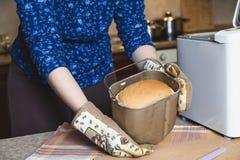 开胃新鲜的面包以烘烤面包的形式 库存图片