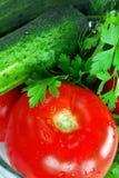 开胃新鲜蔬菜 免版税库存照片