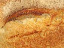 开胃新鲜面包外壳。 免版税库存图片