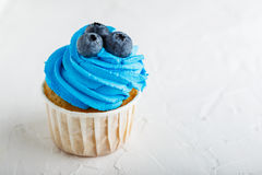 开胃杯形蛋糕用蓝莓 库存照片