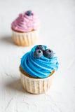 开胃杯形蛋糕用蓝莓 图库摄影