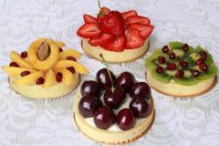 开胃果子馅饼用樱桃、草莓、杏子、猕猴桃和石榴 库存图片