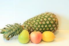 开胃果子,菠萝,石榴,柠檬,苹果,梨,猕猴桃,葡萄柚,龙眼,长孔静物画  图库摄影