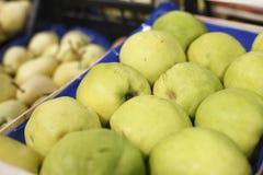 开胃柑橘在超级市场 免版税库存照片