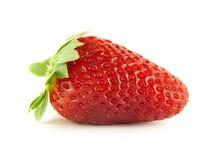 开胃查出的草莓白色 免版税库存图片