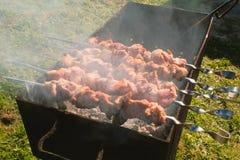 开胃水多的猪肉烤肉在串被烤在木炭格栅顶部 特写镜头肉片 库存图片
