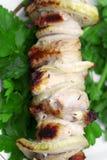开胃水多的kebab shish 免版税库存照片