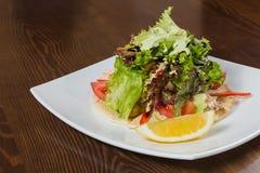 开胃沙拉用在一块白色板材的调味汁 库存照片