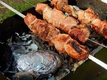 开胃油煎的猪肉烤肉串 免版税库存照片