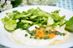 开胃炒蛋用圆白菜沙拉 库存图片