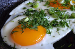 开胃炒蛋用葱和莳萝 图库摄影