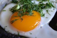 开胃炒蛋用葱和莳萝 免版税图库摄影