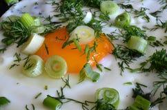 开胃炒蛋用葱和莳萝 库存图片