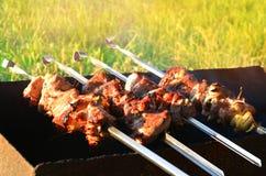 开胃烤肉串在度假,肉,猪肉 库存照片