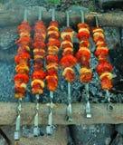 开胃烤肉串在木炭的西伯利亚森林俄罗斯里烤了 库存照片