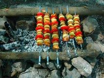 开胃烤肉串在木炭的西伯利亚森林俄罗斯里烤了 免版税库存图片