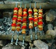 开胃烤肉串在木炭的西伯利亚森林俄罗斯里烤了 库存图片