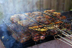 开胃烤肉串在果树的煤炭烹调了 图库摄影