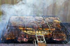 开胃烤肉串在果树的煤炭烹调了 库存图片