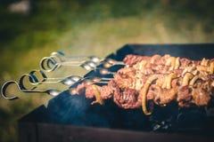 开胃烤肉烤肉串 图库摄影