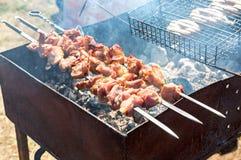 开胃热的烤肉串 免版税库存照片