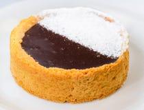 开胃甜蛋糕用巧克力和搽粉的糖在光 库存照片