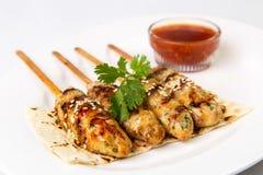 开胃白种人盘,肉kebab羊羔用在白色p的调味汁 免版税库存照片
