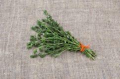 开胃的菜肴栓了与橙色串的美味医疗香料草本在亚麻布 免版税库存图片