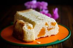 开胃砂锅酸奶干酪 库存图片