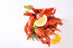 开胃红色煮沸了在白色背景的小龙虾 图库摄影