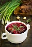 开胃红色罗宋汤汤 免版税库存照片