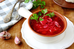 开胃红色蕃茄罗宋汤 库存照片