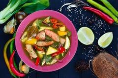 开胃绿色咖喱汤用鸡肉和大米面条,平 免版税库存照片