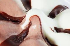 开胃美丽的冰淇凌 库存图片