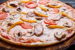 开胃美味的薄饼用蕃茄、鸡、辣椒粉和mushroo 库存照片