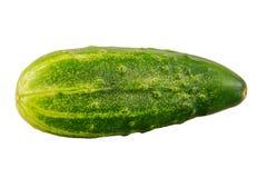 开胃背景黄瓜照片成熟非常白色 免版税库存照片