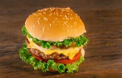 开胃自创乳酪汉堡用牛肉小馅饼蕃茄,乳酪, 库存图片
