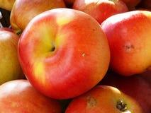 开胃苹果 免版税库存图片