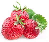 开胃草莓 免版税库存照片