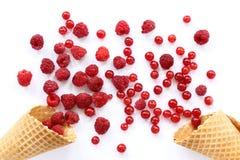 开胃莓果烟花 库存图片