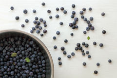 开胃莓果背景 库存图片