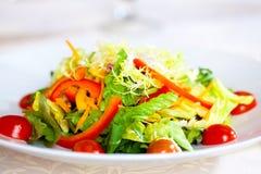 开胃菜五颜六色的盘沙拉蔬菜 库存照片