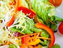 开胃菜五颜六色的盘沙拉蔬菜 图库摄影