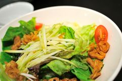 开胃菜作为沙拉素食主义者 库存图片