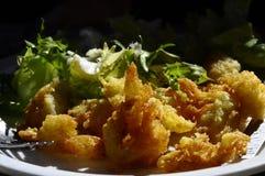 开胃菜土豆油炸馅饼和沙拉 免版税库存照片
