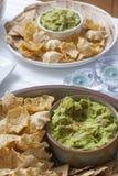 开胃菜墨西哥炸玉米饼(mais玉米粉薄烙饼)与鳄梨调味酱捣碎的鳄梨酱 库存照片