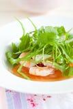 开胃菜新鲜的沙拉 免版税库存图片