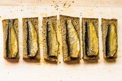 开胃菜有鱼顶视图 免版税库存图片