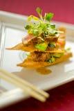 开胃菜枯萎的金枪鱼馄饨 库存照片